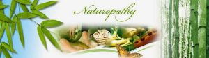 best naturopathic clinic Toronto